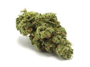 buy banana kush for sale online legalonlinemarijuana,banana kush, banana kush strain, banana kush oil, banana kush leafly, banana kush cartridge, banana kush oil cartridge, banana kush mario carts, banana kush price, banana kush oil cartridge price, banana kush review, banana kush og