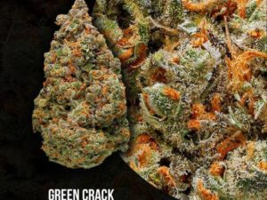 Hydro Green Crack