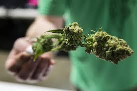 Buy weed online uk, Moon rockets pre rolls , Buy recreational marijuana online, marijuana for sale. Legal Online Cannabis Dispensary