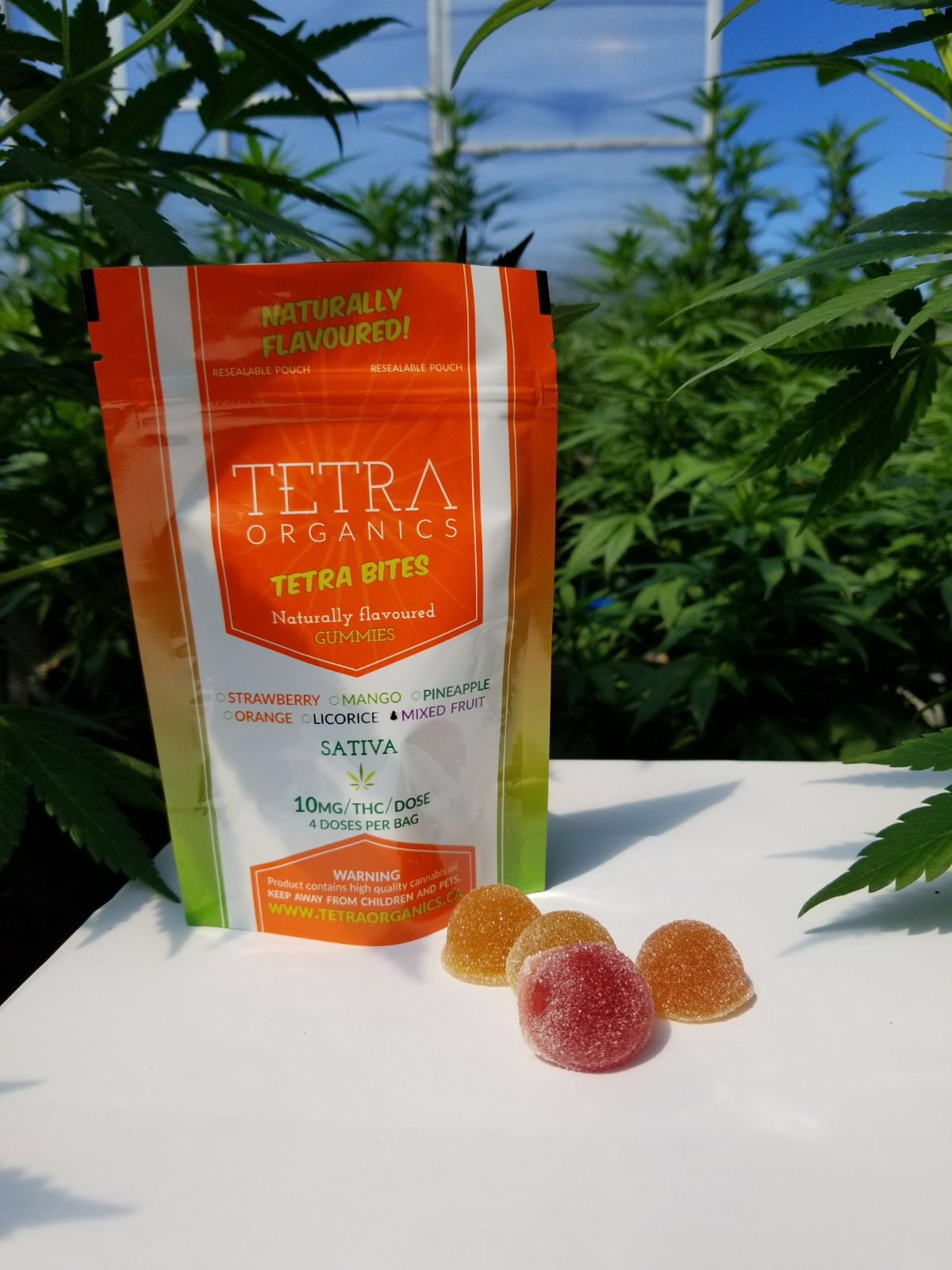buy-gummies-online-mixed-fruit-40mg-thc-sativa-by-tetra-bites-is-for-sale-at-legalonlinemarijuana-dispansary-the-best-marijuana-weed-dispensary-in-canada2 (1)