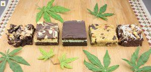 Mint Chip Brownie Cannabis