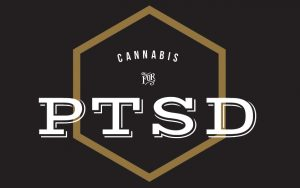 Read more about the article Could Cannabis be the key to PTSD Treatment