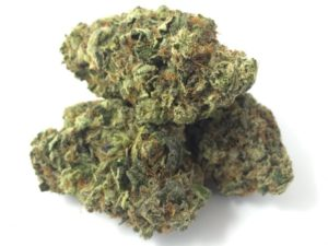 Tahoe Og Kush|Tahoe Og Kush Strain | tahoe og kush strain review