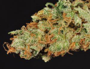 legalonlinecannabisdispensary