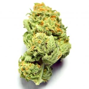 420 MAIL ORDER USA CREDIT CARD Legal Online Cannabis Dispensary