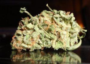 vanilla kush strain|vanilla|vanilla kush grow tips kush | vanilla kush strain review