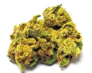 kshy kush strain at legalonlinecannabisdispensary.com, Buy Kushy Kush Online