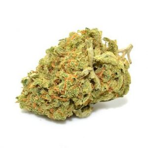 Buy Lemon Haze Online, super lemon haze,lemon haze strain,super lemon haze strain,lemon haze leafly,lemon haze weed,lemon og haze,kingpen super lemon haze,purple lemon haze,sour lemon haze,super lemon haze cartridge,super lemon haze kingpen,lemon haze cartridge,super lemon haze leafly,super lemon haze oil,super lemon haze seeds, leafly super lemon haze,lemon haze seeds,lemon haze oil,super lemon haze king pen,super lemon haze strain info,super silver lemon haze,lemon haze indica or sativa,lemon haze sativa,silver lemon haze,super lemon haze oil cartridge,kingpen lemon haze,lemon haze marijuana,lemon haze oil cartridge,super lemon haze review,sour lemon haze strain,lemon haze oil effects,lemon haze seattle,super lemon haze weed,lemon haze