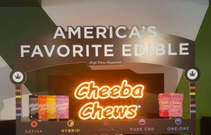 buy cheeba chews online-cheeba chews 100MG-for-sale-deca dose-legalonlinecannabisdispensary56