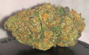 Gelato #41-Gelato #41 review-Legalonlinecannabisdispensary.com-locd-best dispensary