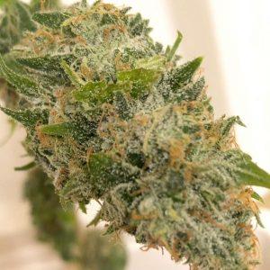 strawnana strain leafly review ,strawnana